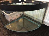 Bowed Curved Front Corner Aquarium Fish Tank in Good Condition