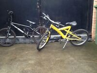 2 boys bicycle