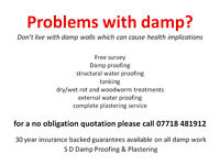 Damp Proofing and Plastering Services