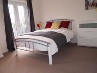 Luxury Rooms Available in Shared House