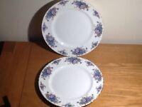 2x dinner plates - Royal Albert Moonlight Rose
