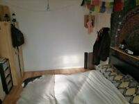 Lovely ensuite double room to sublet (1st of June - 31st of August)