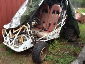 2seater buggy Castlereagh Penrith Area Preview