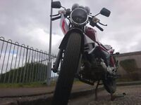 Learner Legal Kymco Pulsar S 125, Great Condition