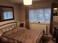 Double room to let in 2 bedroom flat with garden.