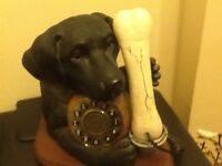 Dog and bone phone perfect condition