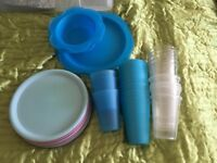 Plastic picnic plates bowls and cups