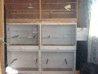 three double breeding cages one has nest boxes on each side only a year old