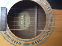 Marina mark 31 acoustic guitar, solid spruce top, excellent sound with gig bag