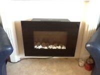 Electric Feature Fire