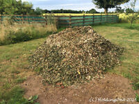 FREE WOOD CHIPPINGS ! CAN DELIVER