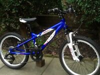 Carrera blast child mountain bike