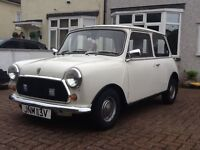 *** CLASSIC 1979 AUSTIN MINI NEEDS NEW HOME ***