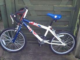 Boys team gb racing bike