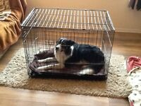 Dog crate,two door, Large size SOLD!