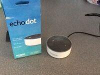 Echo dot new bargain