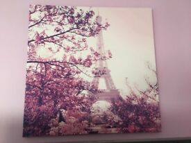 Paris canvas