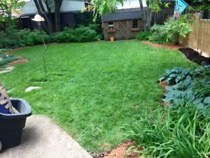 Landscaping/lawns over 16 years