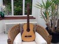 Musima Classical 3/4 Size Guitar