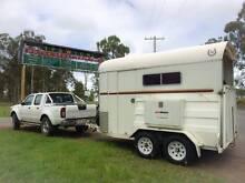 Local Horse Transporting Service Maroochydore Maroochydore Area Preview