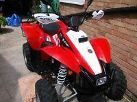 Polaris trailblazer 330