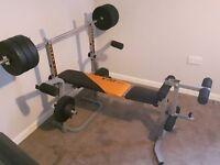 Weights bench 50 kg weights cheat butterfly leg curl etc