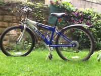 Boy's 220 Mountain Trek bike. Suit age 7-12. In excellent condition. Cost over £200 new.