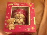 Friends Forever Mug in Box