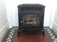 flueless mains gas Fire (burley g4121 mk3)