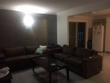 Large furnished room for rent