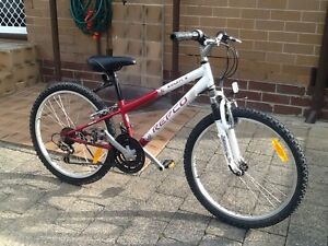 24' working mountain bike Noble Park Greater Dandenong Preview