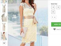 New Ivory Lace knee length dress Size 16