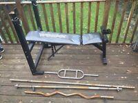 Bench + weight plates, barbells, dumbbells