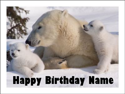 POLAR BEAR & CUBS A4 Edible Icing Birthday Cake Party Decoration Topper (Cubs Birthday Cake)