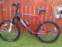 Large mountain bike
