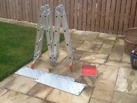 Multi purpose scaffolding ladders
