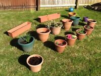 15 pot plant holders/containers