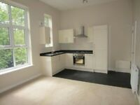 Fresh 1 Bedroom flat in Walthamstow dss with guarantor accepted