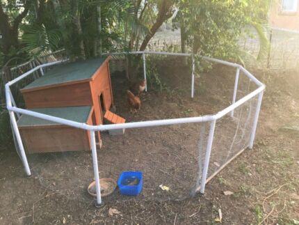 Chicken enclosure / run