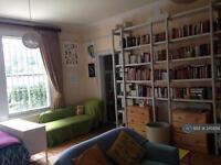 Studio flat in Tressillian Crescent, London, SE4