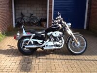 Harley Davidson xl1200 custom sporster