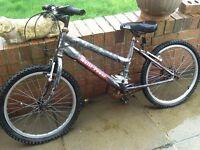 Children's bicycles for repair