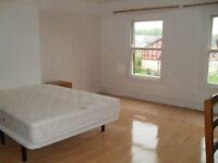 Three large double rooms available on Aigburth Rd, £215 pcm inc council tax