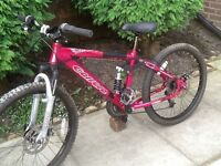 Carrera sol.24 disc brake dual suspension girls mountain bike