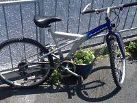 Apollo men's mountain bike