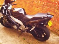 stunning 96 thunder-cat, race pipe,runs great, just a few cosmetic bits