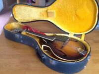 Mandolin - Electra with case and strap