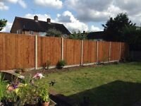 Fencing panels in stock for delivery in and around the North London Area