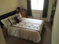 Double Room to rent in new house in quiet cul de sac