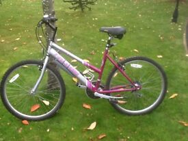 Ladies Falcon Mountain Bike